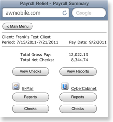 Payroll Relief Mobile - Payroll Summary